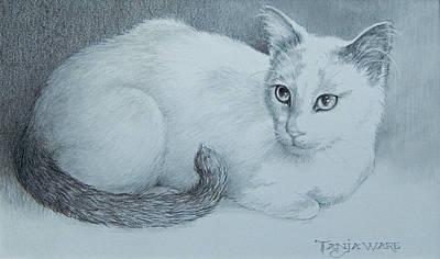 Miss Kitty Original by Tanja Ware