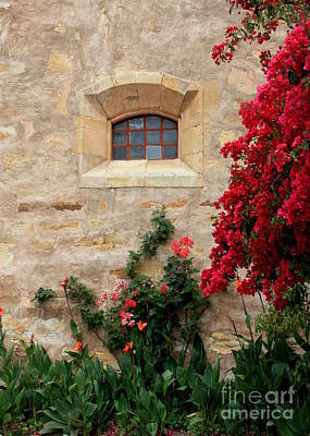 Textures And Colors Photograph - Mission Window by Carol Groenen