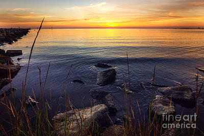 Mississippi Gulf Sunset Print by Joan McCool