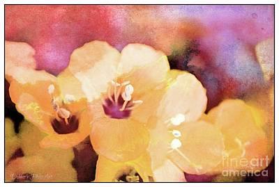 Missouri Wildflowers 5  - Polemonium Reptans -  Digital Paint 6 Print by Debbie Portwood