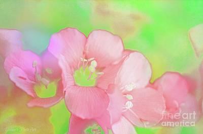 Missouri Wildflowers 5  - Polemonium Reptans -  Digital Paint 7 Print by Debbie Portwood