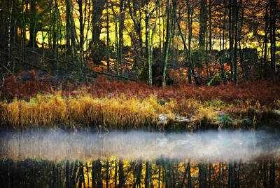 Mist On The Water Print by Meirion Matthias