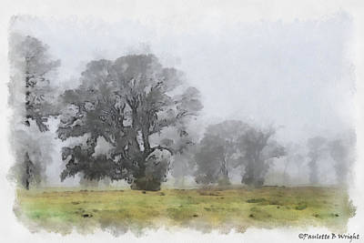 Paulette Wright Digital Art - Misty Morn by Paulette B Wright