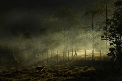 Misty Morning Print by Nunu Rizani