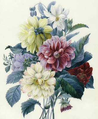 Mixed Dahlias Print by Elisa-Emilie Lemire