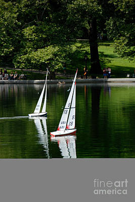 Model Boats Central Park New York Print by Amy Cicconi