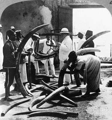 Mombasa Photograph - Mombasa: Ivory Trade by Granger