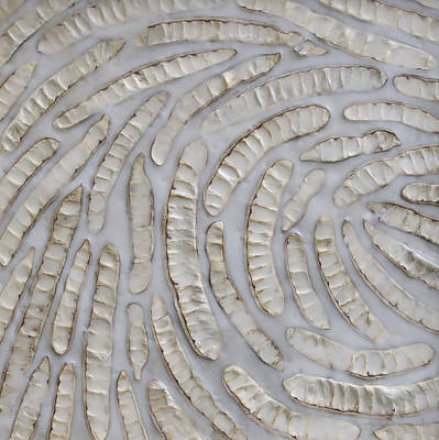 Abstract Forms Photograph - Momentum by Susie Frazier