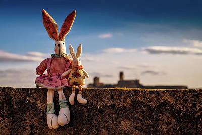 Ledge Photograph - Mommy And Baby Bunny by Jose Antonio Alba