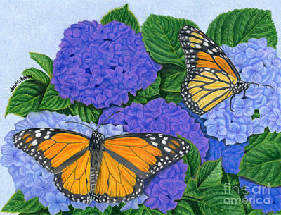 Nature Art Drawing - Monarch Butterflies And Hydrangeas by Sarah Batalka