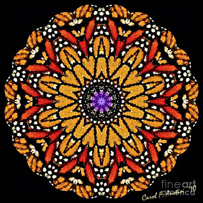 Abstract Image Of A Butterfly Photograph - Monarch Butterfly Wings Kaleidoscope by Carol F Austin
