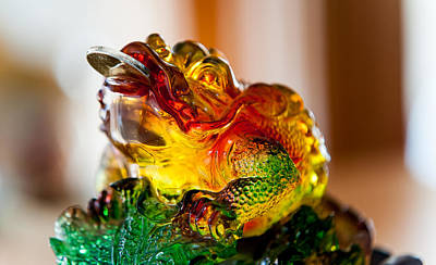 Of Money Photograph - Money Frog. Feng Shui by Jenny Rainbow