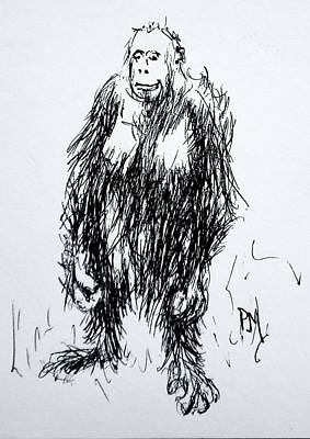 Orangutan Drawing - Monkey Business by Pete Maier