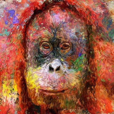 House Pet Digital Art - Monkey Color Life by Yury Malkov
