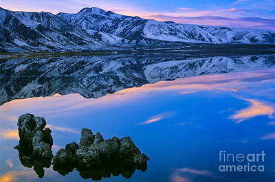 Vines Photograph - Mono Lake Twilight by Inge Johnsson