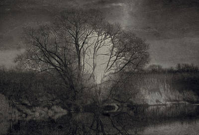 Monochrome Artistic Creek Tree Print by Leif Sohlman