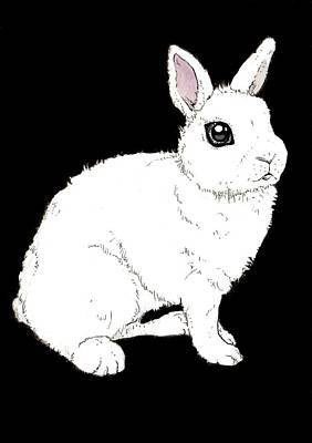 Rabbit Drawing - Monochrome Rabbit by Katrina Davis