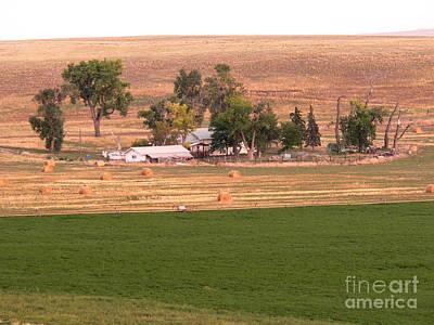 Montana Harvest Time Print by David Bearden