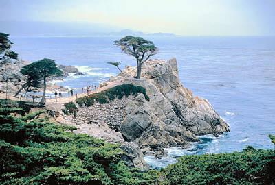 Cyprus Photograph - Monterey Cyprus  California Seacoast Seascape Picture Decor by John Samsen