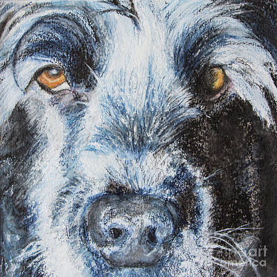 Cocker Spaniel Painting - Moody Blue by Kathryn Bell