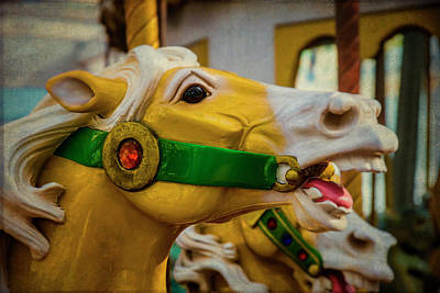 Antique Carousel Photograph - Moody  Carrousel Horse by Garry Gay