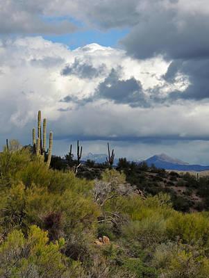 Metro Art Photograph - Moody Desert Skies by Gordon Beck