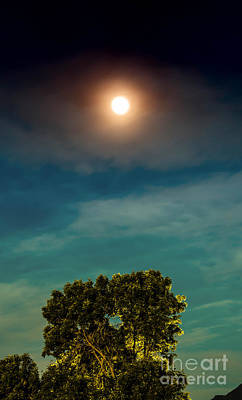 Moon And Tree Print by Dennis Wagner