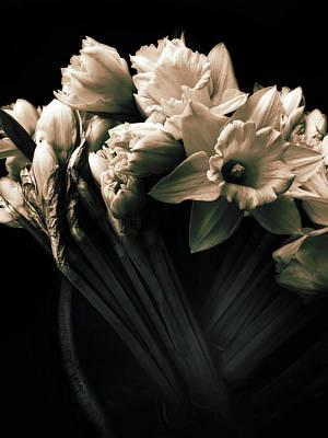 Daffodils Digital Art - Moonlight Embrace by Jessica Jenney