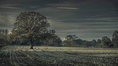 Moonlit Print by Chris Fletcher