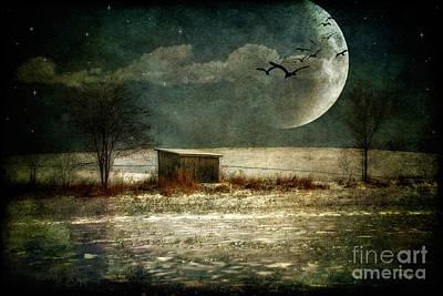 Night Landscape Digital Art - Moonstruck by Lois Bryan