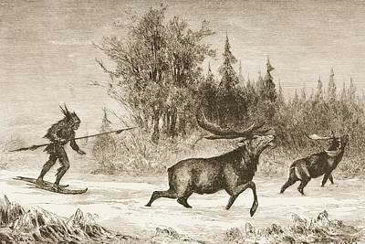 American Food Drawing - Moose Hunting In The North Western by Vintage Design Pics