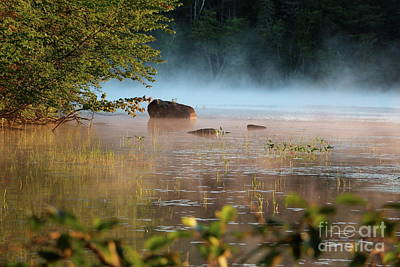 Lake Photograph - Morning Blessings    by Neal Eslinger