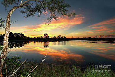 Photograph - Morning Colors  by Rick Mann
