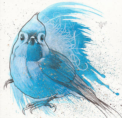 Titmouse Drawing - Morning Courier by Micah Wesley