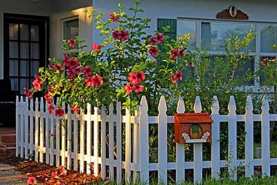 Morning Photograph - Morning Garden by HH Photography of Florida