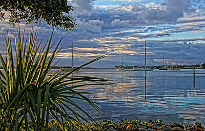 Morning Photograph - Morning Glory by HH Photography of Florida