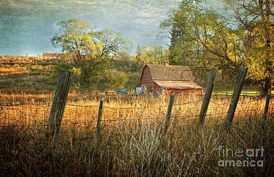 Northwest Mixed Media - Morning Greets The Barnyard  by Beve Brown-Clark Photography