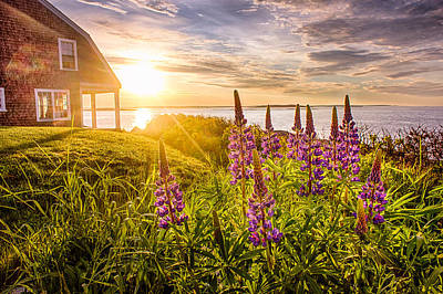Bailey Island Photograph - Morning In Maine by Benjamin Williamson