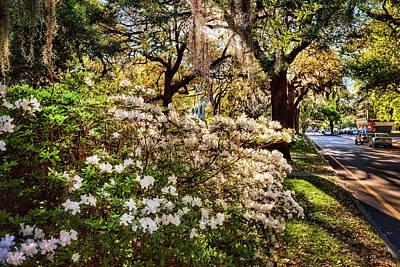 Morning In Savannah Print by Diana Powell