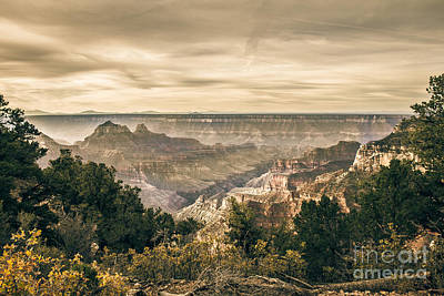 Southwest Gate Photograph - Morning Light At North Rim by Robert Bales