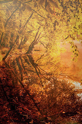 Morning Light Print by Okan YILMAZ