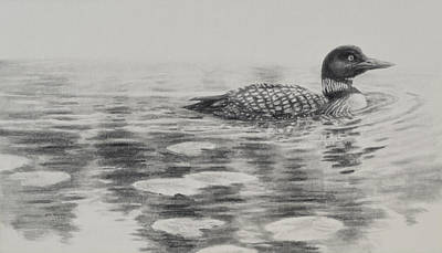 Morning Loon Print by Jim Young