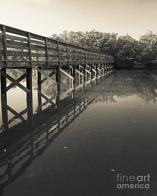 Bowmans Beach Photograph - Morning On The Bayou by Edward Fielding