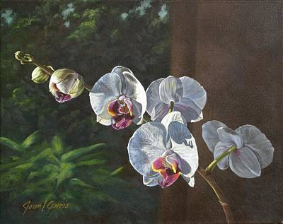Morning Phaleanopsis Print by Joan Garcia