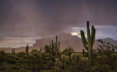 Rainy Day Photograph - Morning Rain  by Saija Lehtonen