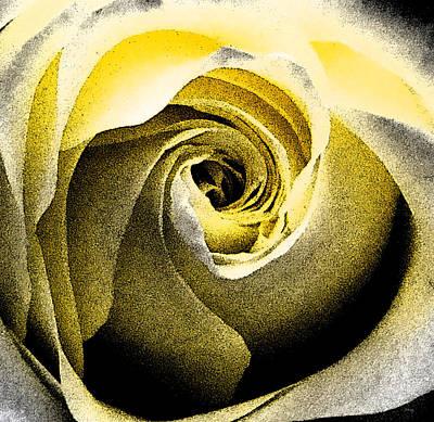 Modern Abstract Drawing - Morning Rose by Amanda Schambon