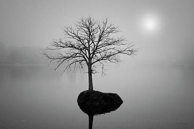 Contemplative Photograph - Morning Tranquility by Dave Gordon