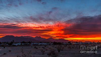Morning View Print by Robert Bales