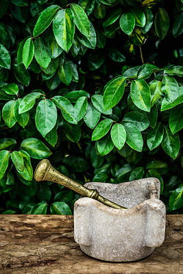Mortar And Pestle Print by Marco Oliveira