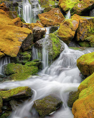 Mossy Falls Print by Bill Wakeley